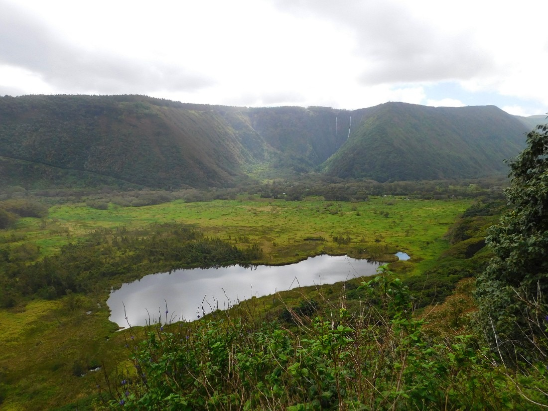 Wai'pio Valley is a highlight of any Hawaii Big Island vacation