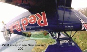 Pitts New Zealand