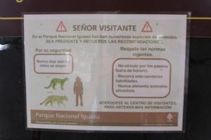 jaguar iguazu, wildside, world wild web