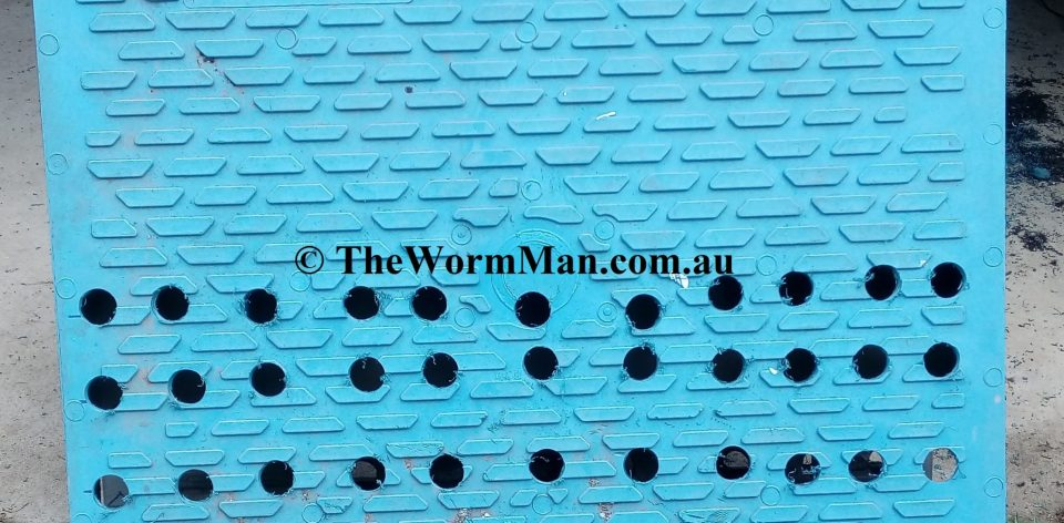 The Wedge Worm Farm - Holes in pallet