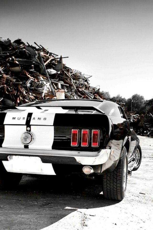 Best Car Logo Wallpapers Hd 35 Classic 1965 Mustang Wallpapers The Wow Style
