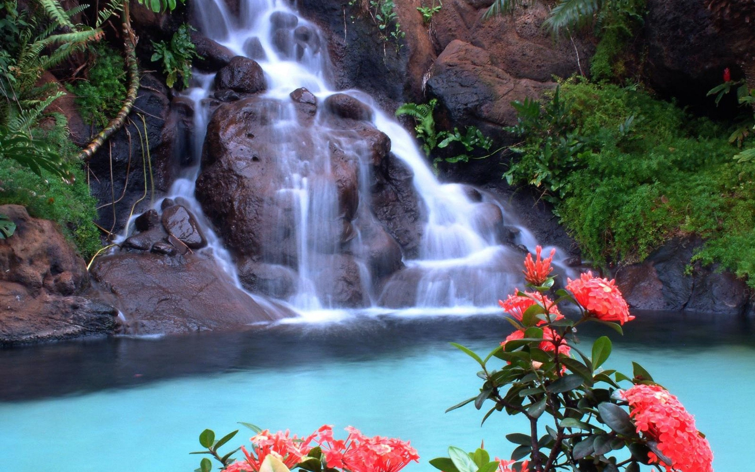 Beautiful Waterfall Pictures And Wallpapers  The WoW Style