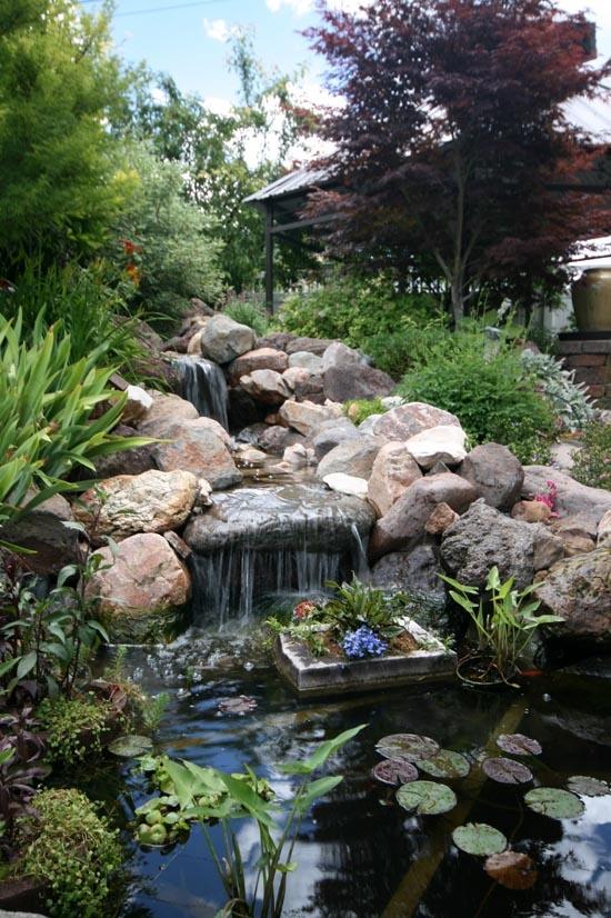 Amazing Backyard Pond Design Ideas The Wow Style