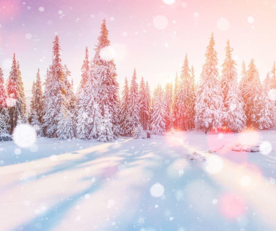 seasonal content for winter