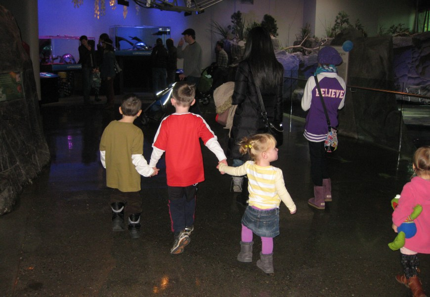 A Visit to Luminescence at the Vancouver Aquarium