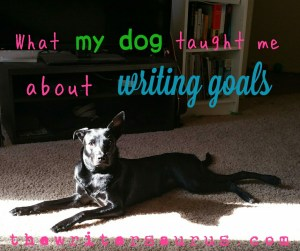 What my dog taught me about realistic writing goals - learn why a lower daily word count goal actually helps you write more in the long run!