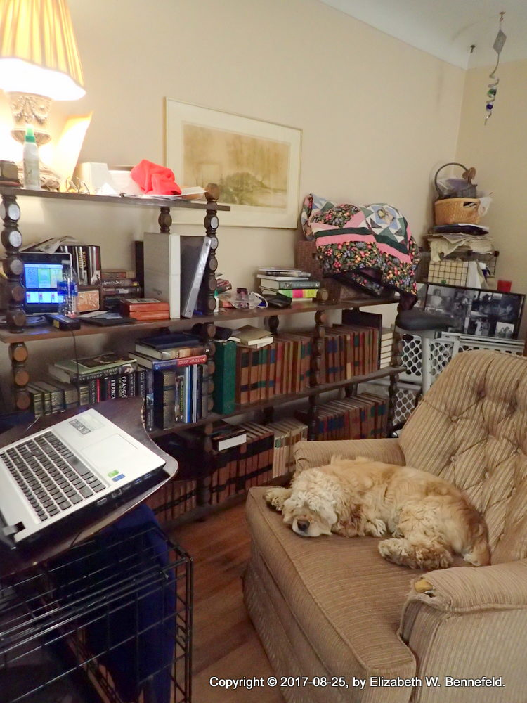 Where I Write: The Front Room