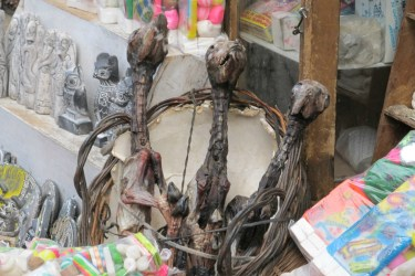Scary baby llama carcasses that people buy as souvenirs for some reason?