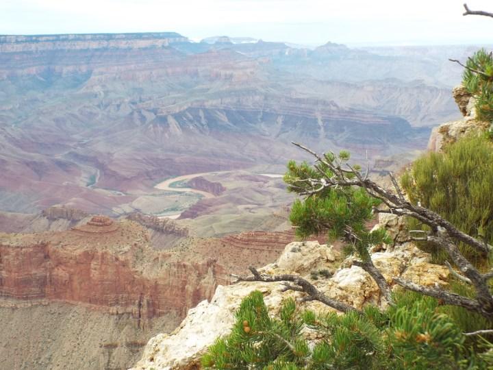 Desert View Drive
