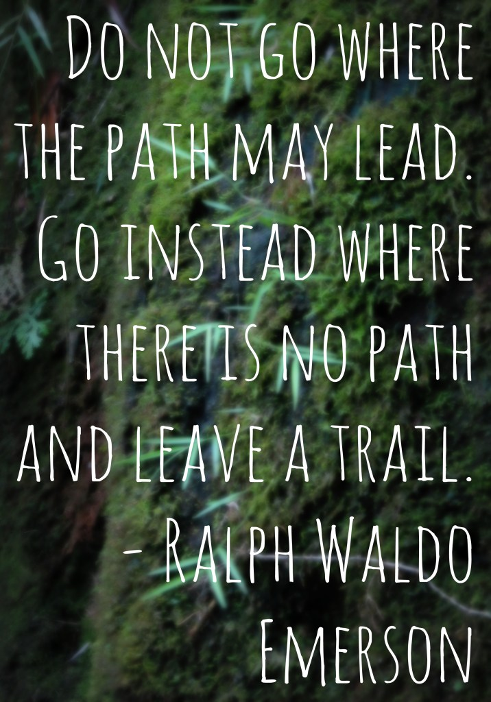 Do not go where the path may lead. Go instead where there is no path and leave a trail. - Ralph Waldo Emerson