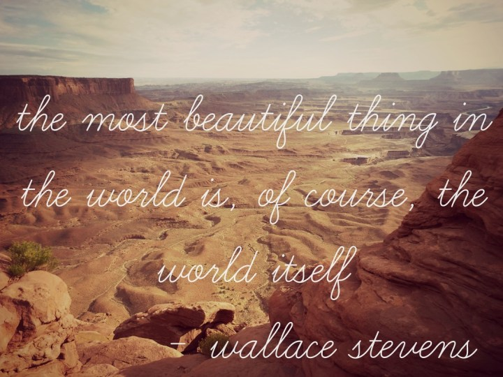 The most beautiful thing in the world is, of course, the world itself. - Wallace Stevens