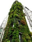 Living wall on a hotel in London