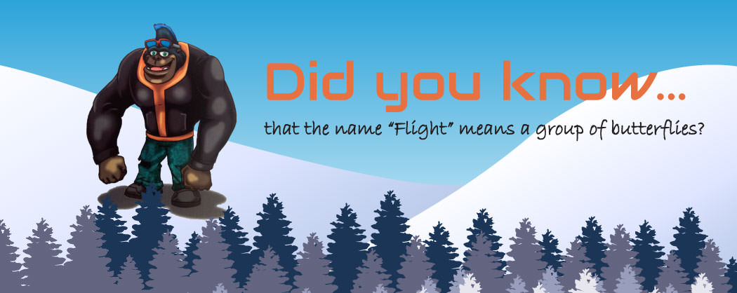 XTails-FF-FlightsName