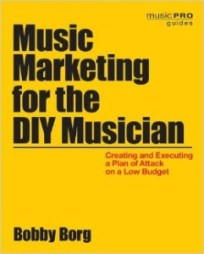 Music Marketing for the DIY Musician (Independent Music Success) - independent artists