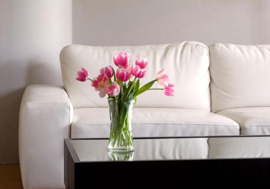 Simple living-room © debr22pics| dollarphotoclub.com