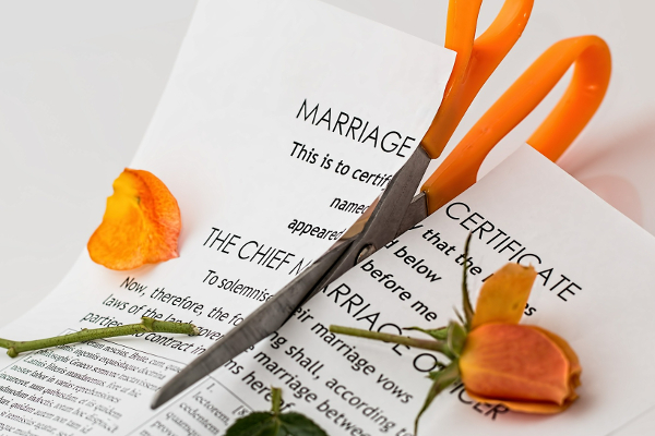 Marriage papers and rose cut in half