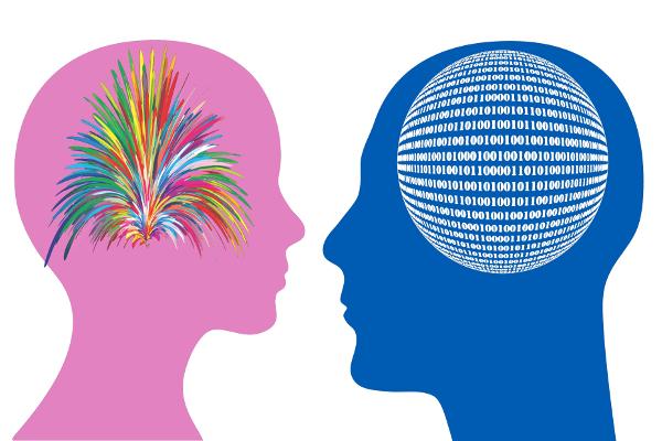 Female Brain ≠Male Brain