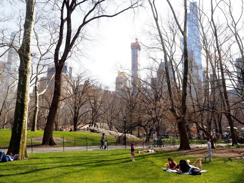Central Park Nowy Jork