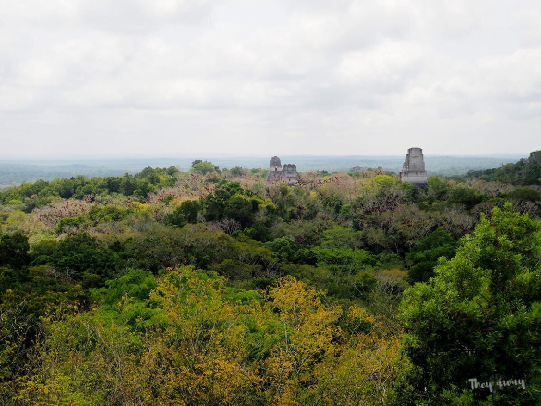 Tikal Gwatemala ruiny Majów