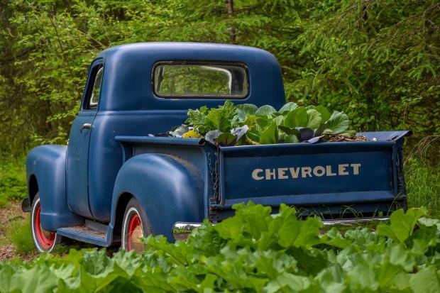 ILA Botanical Garden Truck.jpg