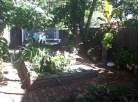 How I Made a Tropical Backyard Oasis in Denver on a Cheap ...