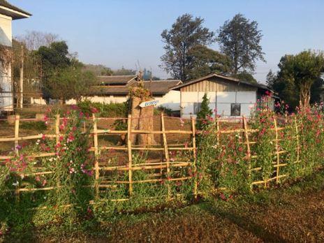 Blog Hsipaw-Pyin Oo Lio - 59 of 74