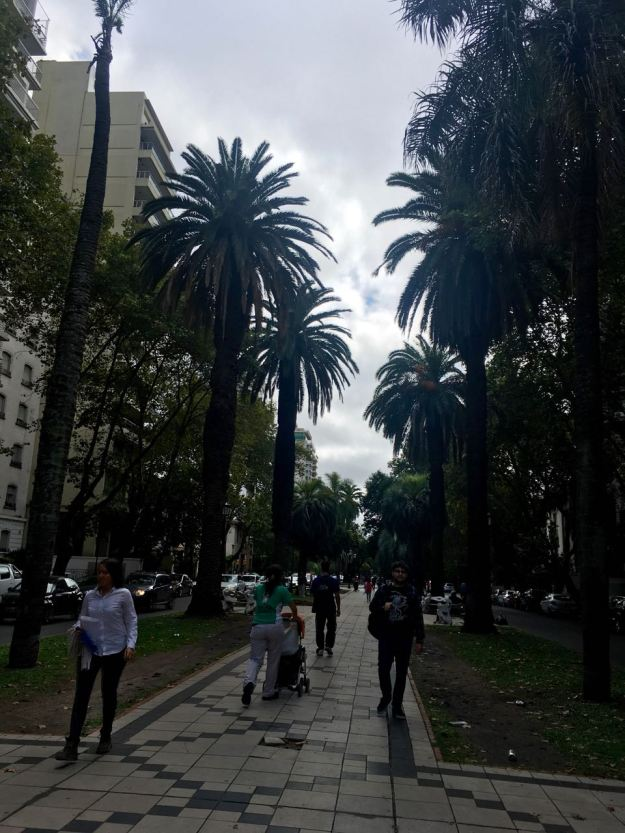 BLOG Mendoza, Cordoba, ROsario - 98 of 116