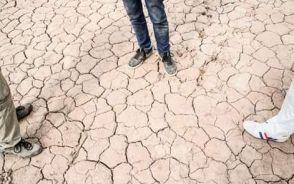 El suelo en Tres Pozos es muy seco.  Fuente: Claudio Barrientos
