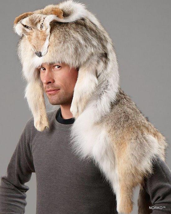 bonnet coyote