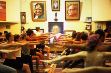 Studnets practice Ashtanga Yoga in Mysore, India.