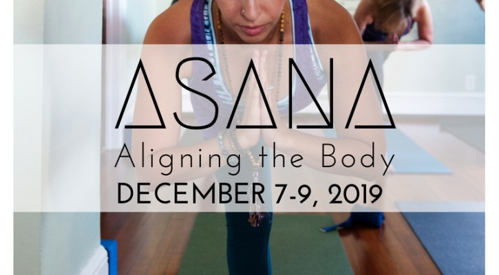 ASANA YTT, the yoga house, teacher training program