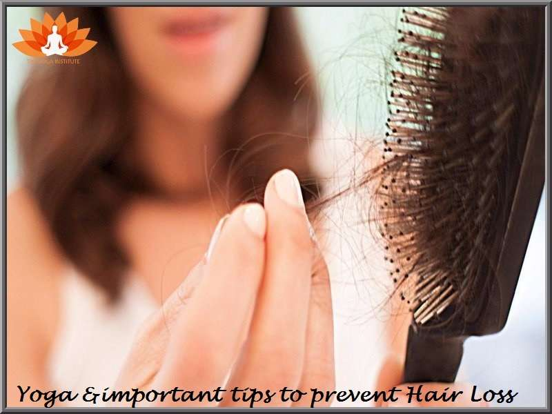 Yoga Important Tips To Prevent Hair Loss The Yoga