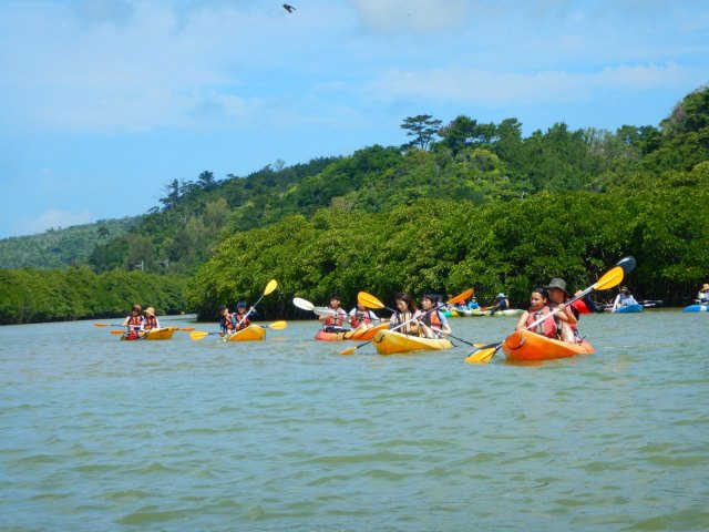 Kayaking Yanbaru Mangrove Okinawa - Course A Group