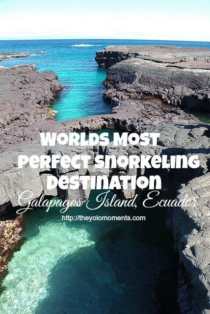 Worlds Most Perfect Snorkeling Destination You Should Definitely Visit - Galapagos Island Ecuador
