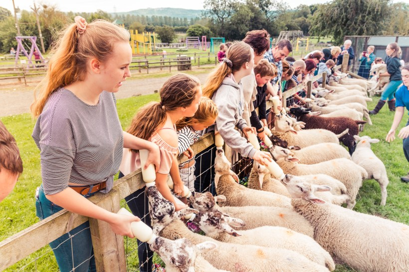 Review of Monk Park Farm near Thirsk | The Yorkshire Dad of 4