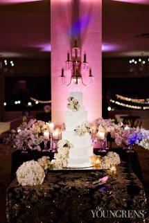 Hotel Del Coronado Wedding Part Two Marc And Tricia