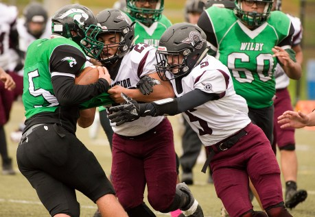 Wilby's Erick Pelton (5) gets dropped for a loss by Torrington's Joshua Maldonado (23) and Jacob Coleman (5) during their NVL game Saturday morning at Municipal Stadium in Waterbury. Jim Shannon Republican American