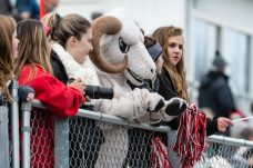 The Cheshire Ram mascot along with some loyal Cheshire fans looks on and cheers from the sidelines during the CIAC 2018 Class L Field Hockey Championship game between Staples and Cheshire at Wethersfield High School in Wethersfield on Sunday. Staples beat Cheshire 2-0, thus winning the Class L Championship for 2018. Bill Shettle Republican-American