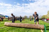 Wamogo sophomores Jake Harrison, left, and Sebastian Hudson roll a large log, during a Timber team competition between Wamogo and Woodland at Woodland Regional High School in Beacon Falls on Friday. Bill Shettle Republican-American