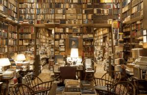 biblioteca ajedrez