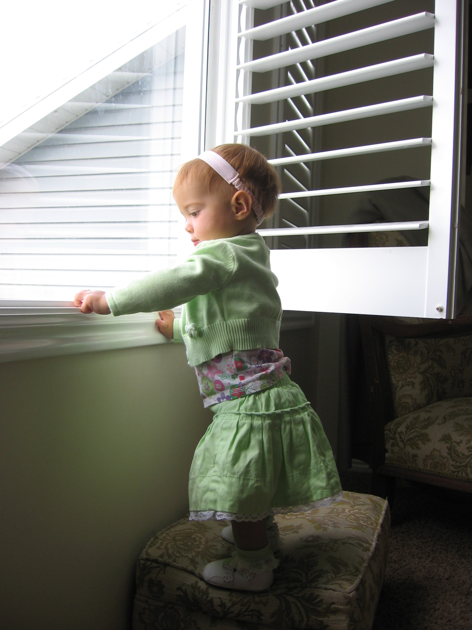 Looking Out the Window