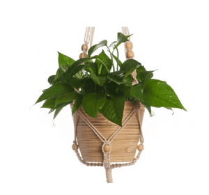 Beaded Woven Cotton Wall Planters