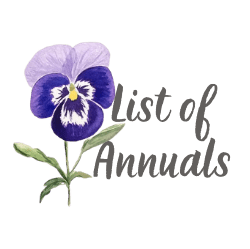 List of Annuals