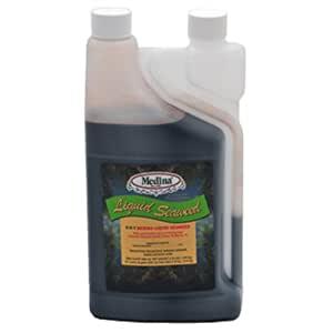 Medina® Liquid Seaweed