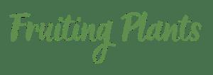 Fruiting Plants