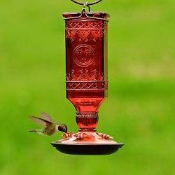 Perky-Pet® Red Square Antique Bottle Glass Hummingbird Feeder