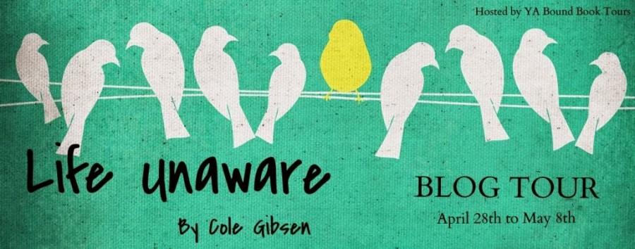 Life Unaware Tour Banner