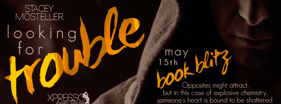 LOOKING FOR TROUBLE Book Blitz