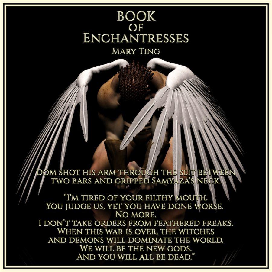 BOOK OF ENCHANTRESS Teaser