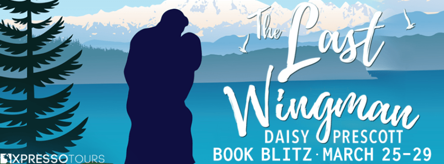 THE LAST WINGMAN Book Blitz